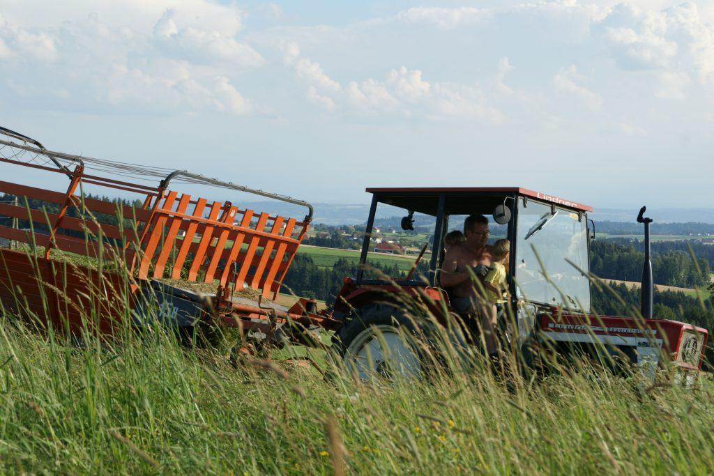 Traktorfahren mit den Gästen